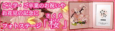 フォトステージ 桜